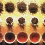 Классификация чая
