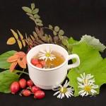 Чайные настои для будущих мам