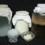 Чайная медуза. Японский гриб
