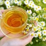 Укрепляем иммунитет чаем
